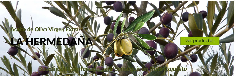 Aceite de oliva virgen extra la Hermedaña. Buscando la perfección para conseguir un fruto exquisito.